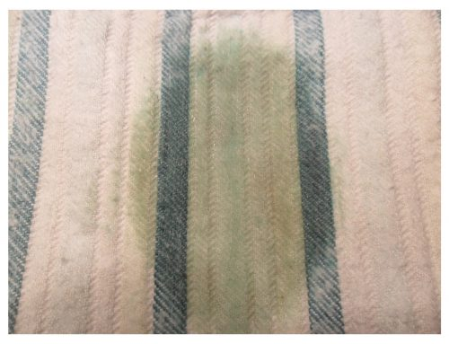 Jak usunąć tłuste plamy z tapicerki samochodowej?